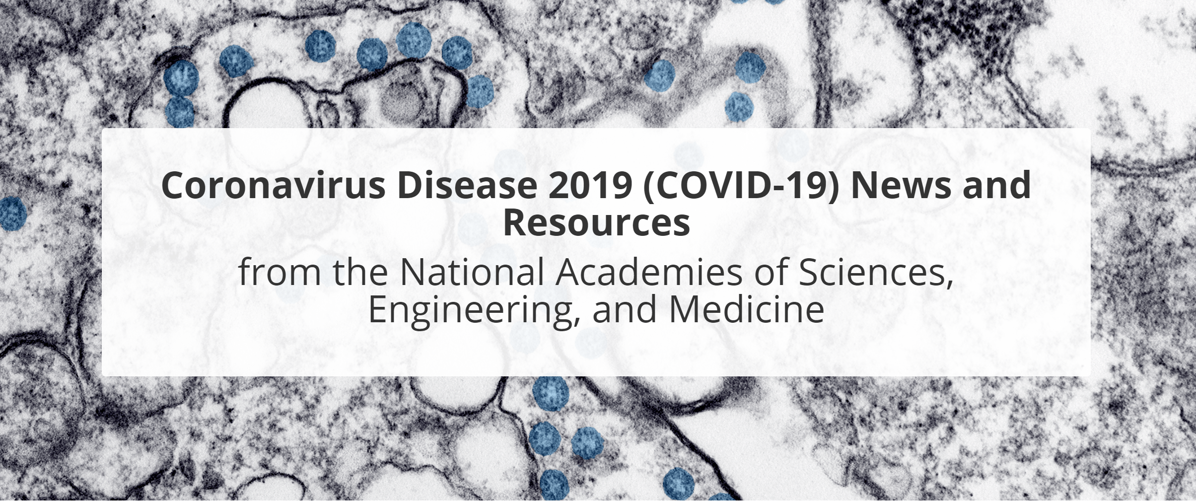 COVID-19 News and Resources