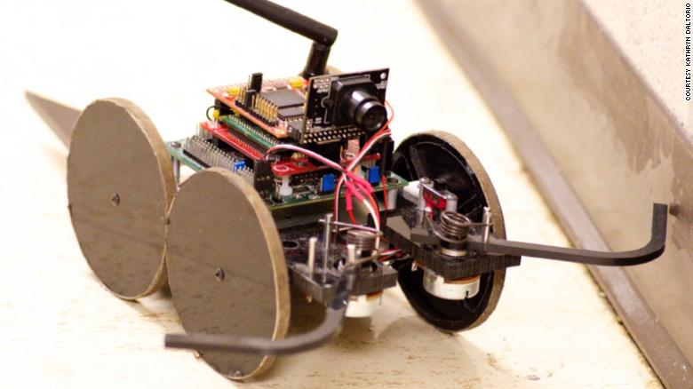 Building Robots with Insect Characteristics